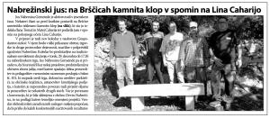 clanekPD-kamnita_klop